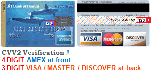 CVV number verification examples for Credit Cards - 4 Digits for American Express - 3 Digits for Discover, Mastercard and Visa
