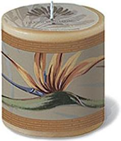 CANDLES - scented decals, decorative and relaxing - elegant bird of paradise